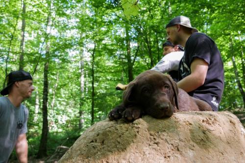 Kudr si pořídil trailsovýho psa, pan Ben.